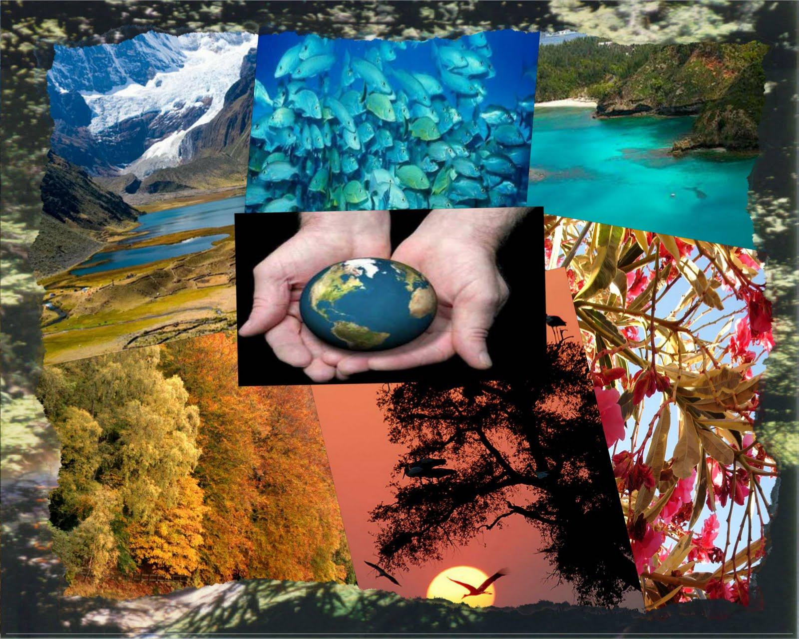 ... planeta…… por que está será la herencia que dejemos a nuestros
